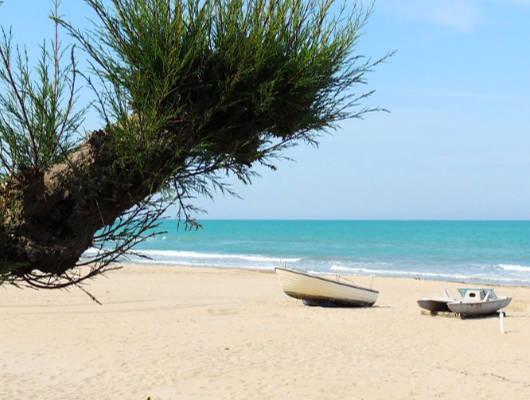 spiagge-libere-small